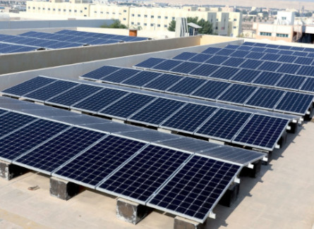 Transguard Achieves Net-Zero Emissions